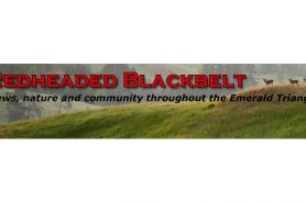 Readheaded Blackbelt – PG&E GIVES CALIFORNIA FIRE FOUNDATION $1 MILLION GRANT TO PREVENT CLIMATE CHANGE